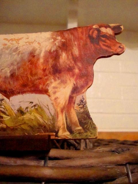 Brwon cow